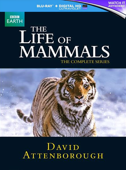 BBC The Life of Mammals (Bluray)