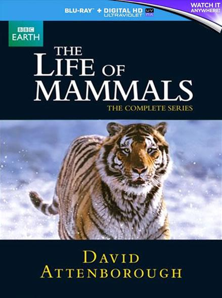 BBC The Life of Mammals (Bluray)