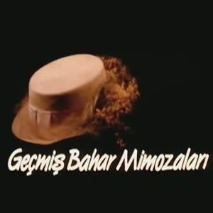 Geçmiş Bahar Mimozaları (1989)